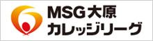 MSGカレッジリーグ